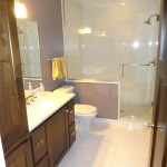 Edina basement remodel bathroom.